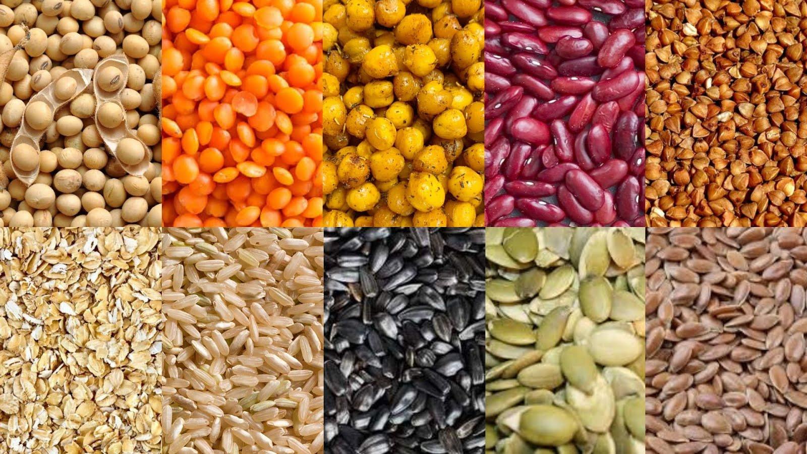 10 produktów roślinnych zawierających białko