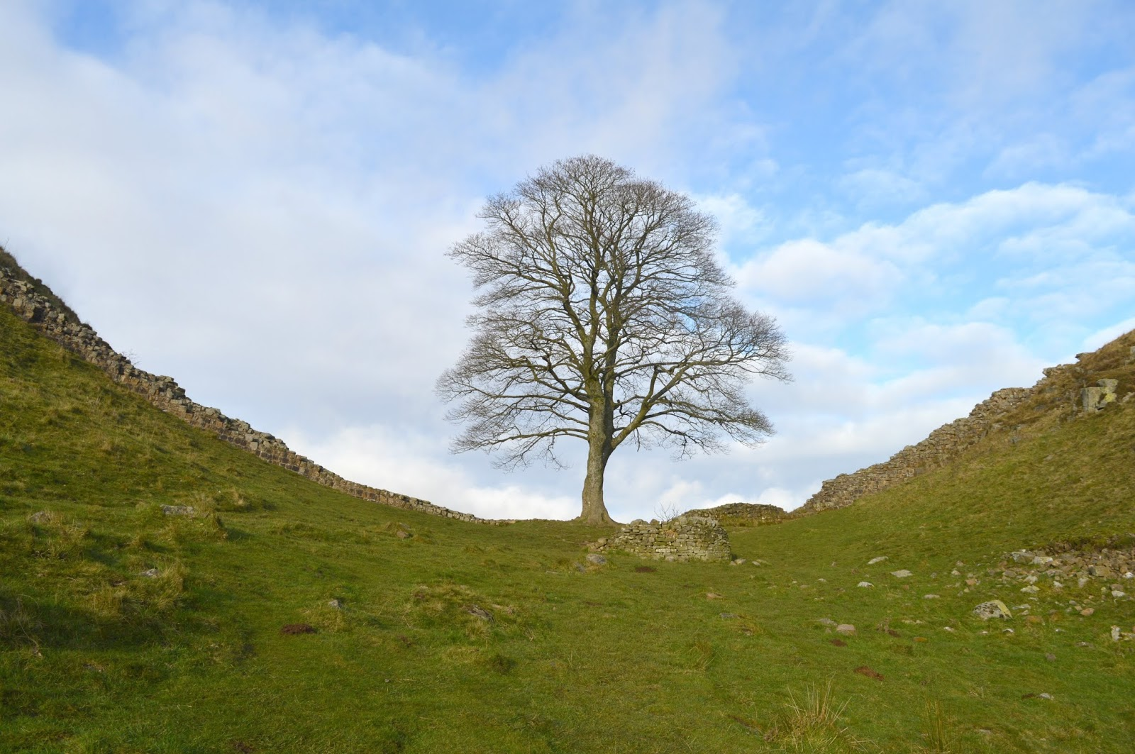 Best Walks in the North East - Hadrian's Wall