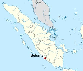 Kabupaten Seluma Dan Darurat Guru Luthfiyah Nurlaela