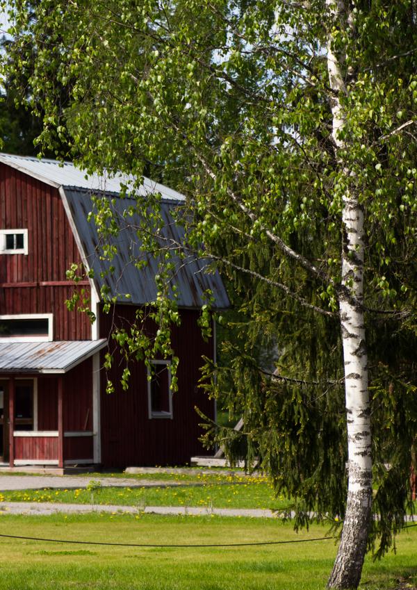 PauMau blogi nelkytplusbloggari nelkytplus Krapi Krapihovi Tuusula Rantatie puisto ympäristö vanha aitta