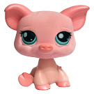Littlest Pet Shop Small Playset Pig (#377) Pet