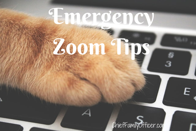 Emergency Zoom Tips