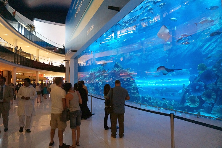 Euriental | travel trip report, Dubai. The Dubai Mall Aquarium.