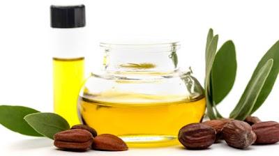 Manfaat Minyak Jojoba untuk Kesehatan Kulit dan Rambu