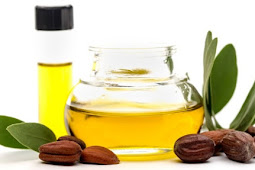 Manfaat Minyak Jojoba untuk Kesehatan Kulit dan Rambut