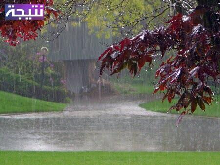 دعاء نزول المطر في القرآن والسنة - دعاء الرعد والبرق وشدة الرياح