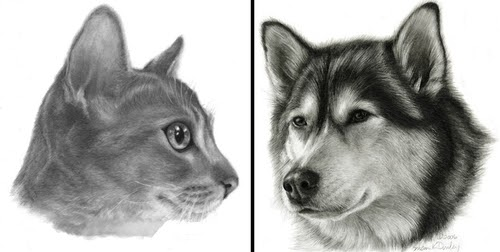 00-Susan-Donley-Cats-and-Dogs-Featured-in-Pencil-Portraits-www-designstack-co