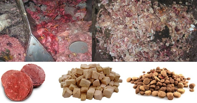 Image result for commercial pet food