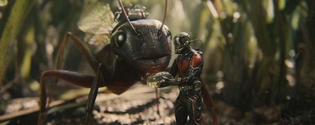 ant-man review bercerita tentang