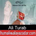 https://www.humaliwalyazadar.com/2018/10/ali-turab-nohay-2019.html
