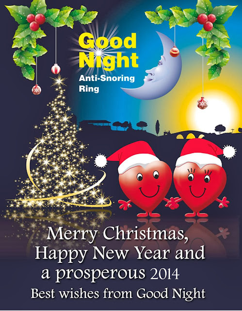 Merry Christmas and a Happy and Prosperous 2014 from Good Night