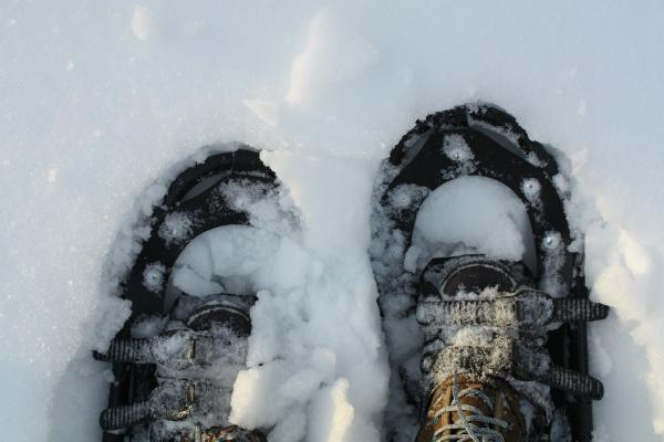 Snowshoes | DevotedQuilter.blogspot.com