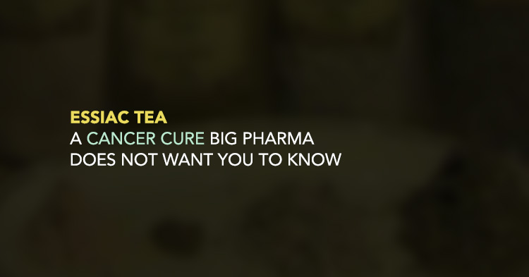 Essiac Tea: A Cancer cure big Pharma does not want you to know.