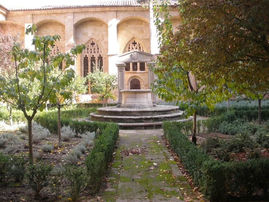 Patio del Claustro de La Catedral de Sigüenza