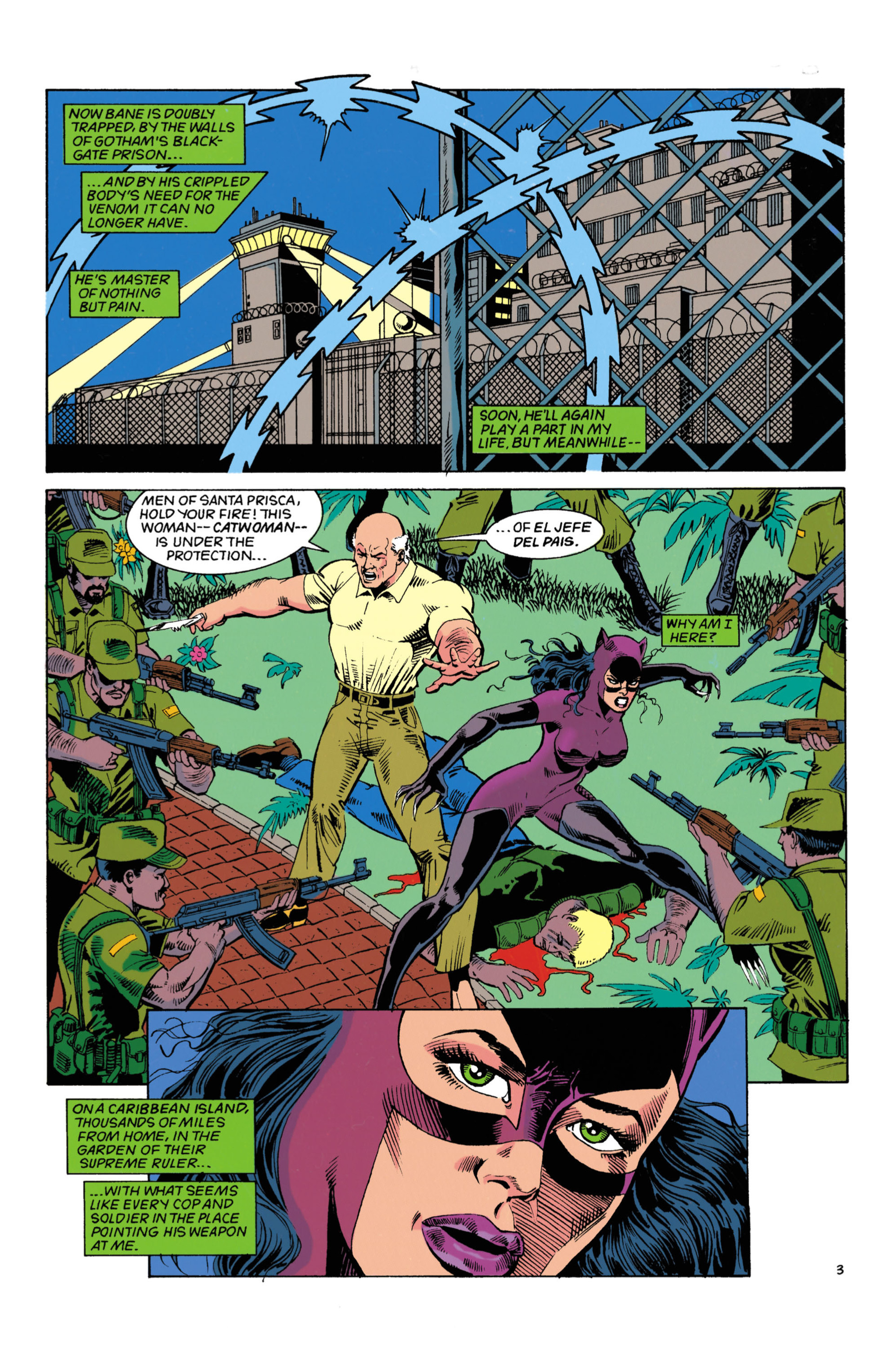 Catwoman (1993) Issue #4 #9 - English 4