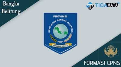 Formasi CPNS Pemprov bangka Belitung 2018