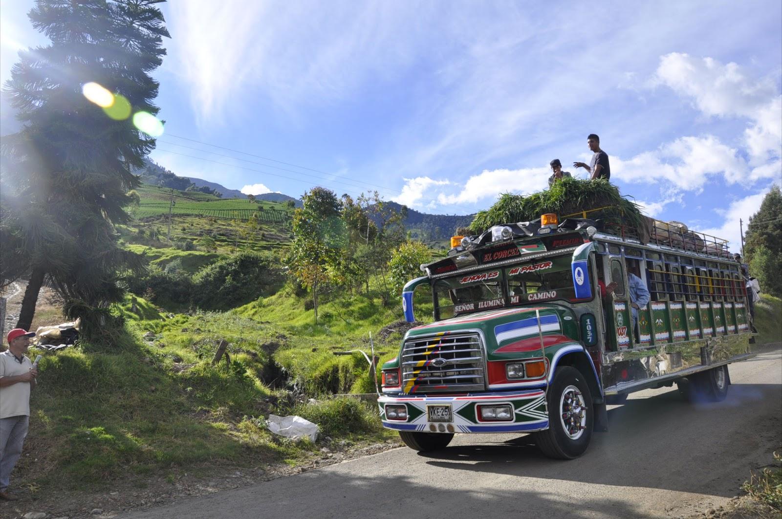 Educacion ambiental 08 01 13 for Empresas de transporte en tenerife