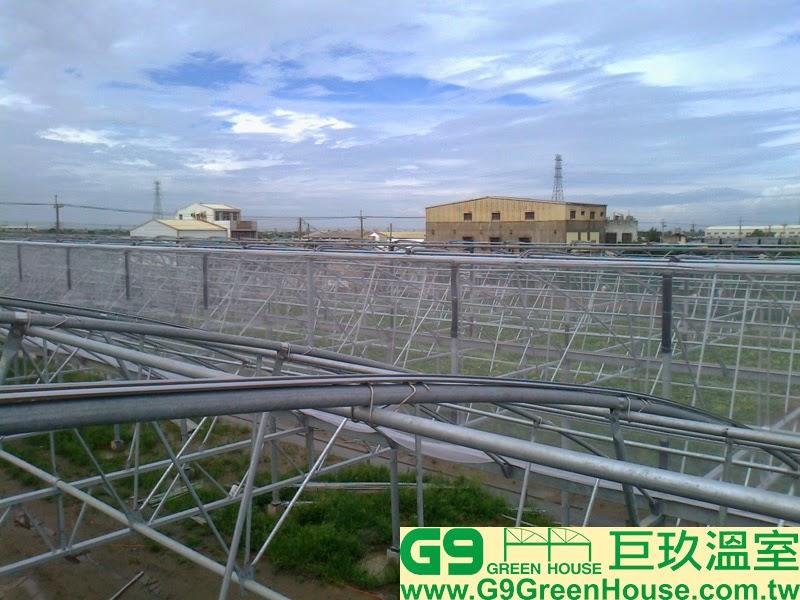 22.鋸齒型溫室結構通風口覆蓋16目防蟲網完成外觀