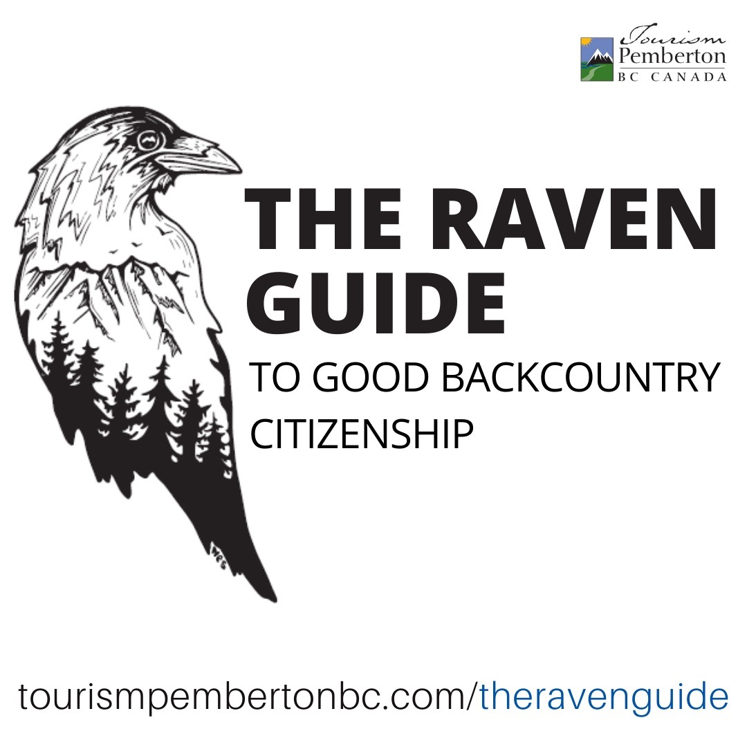 The Raven Guide