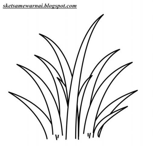 Izarnazar Gambar Mewarnai Rumput Dan Bunga