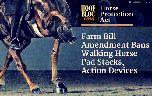 horse protection act amendment to farm bill