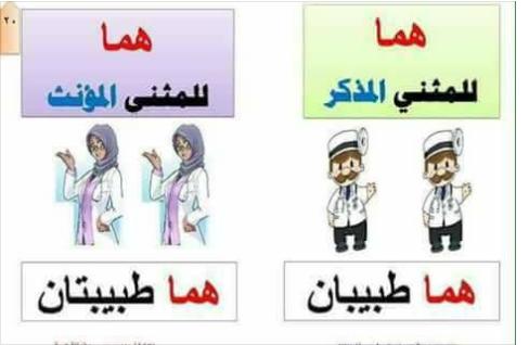 اساليب وتراكيب في مادة اللغة العربية الثانية ابتدائي