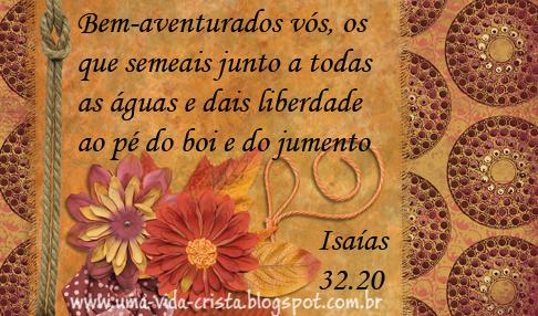 Como ser feliz? A felicidade da abundância de Deus - Isaías 32:20