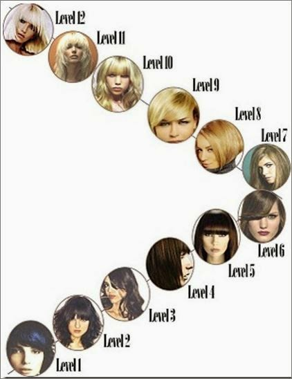 Become a Crib Colorist : Learn the Level System of Hair ...