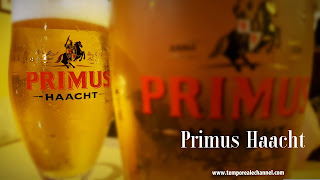 birra in belgio birra belga