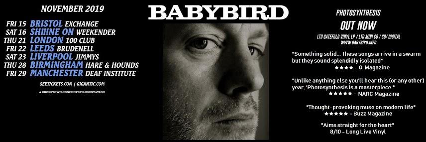 Babybird - Bad Old Man