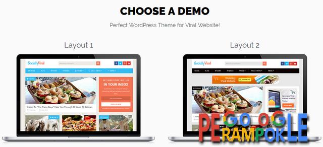 Theme wordpress khusus untuk daftar adsense