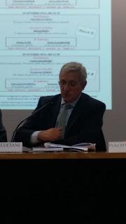 Massimo Luciani (1/4)