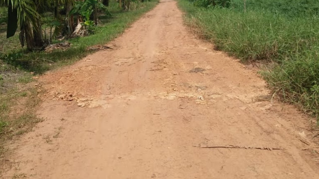 Dinas PUPR Rohil Beri Penjelasan Terkait Proyek Aucas Jalan Praka wahyudi