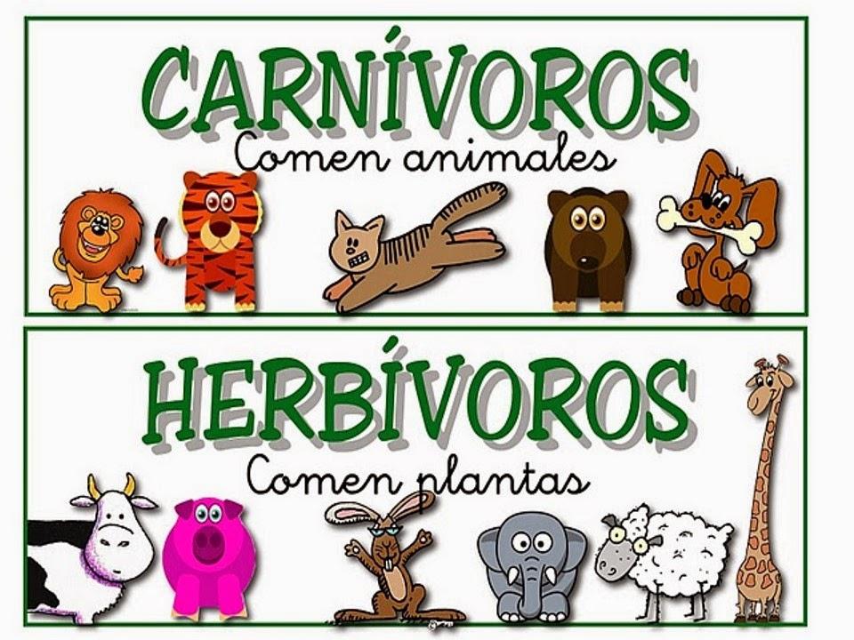 Imagenes De Animales Carnivoros Para Colorear: INTEGRACIÓN DE ÁREAS