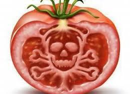 gıda terörü ile ilgili görsel sonucu
