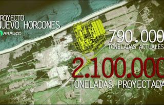 Chile / Saqueo extractivista. Corte Suprema da luz verde al nocivo proyecto M.A.P.A. de Celulosa Arauco