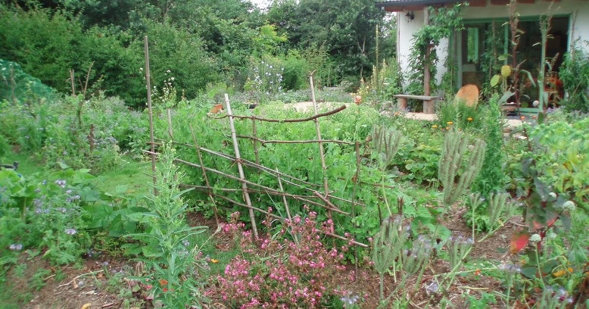 Liorzho visite p dagogique d 39 un jardin orient e vers la for Jardin oriente est