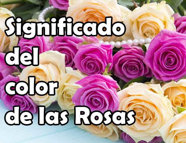 Significado Del Color De Las Rosas Colores 7