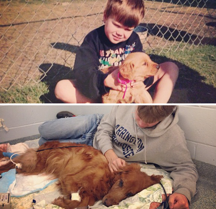 30 Heart-Warming Photos Of Dogs Growing Up Together With Their Owners - Someone Dear To Me Passed Away Today. This Is My Best Friend Genevieve, On The First Day We Met, And The Last Day