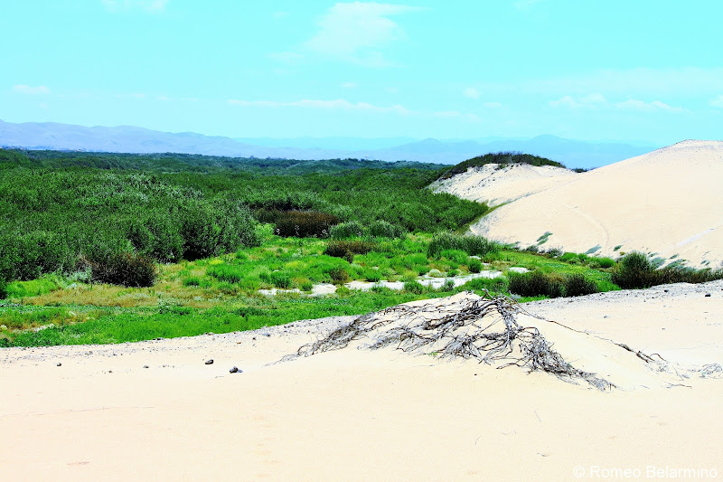 Rancho Guadalupe Dunes Central California Weekend Getaway