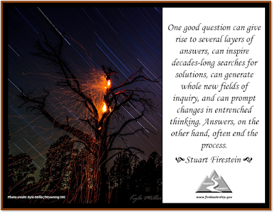 One good question can give rise to several layers of answers, can inspire decades-long searches for solutions, can generate whole new fields of inquiry, and can prompt changes in entrenched thinking. Answers, on the other hand, often end the process. - Stuart Firestein  [Photo credit: Kyle Miller/Wyoming IHC] (tree on fire at night)