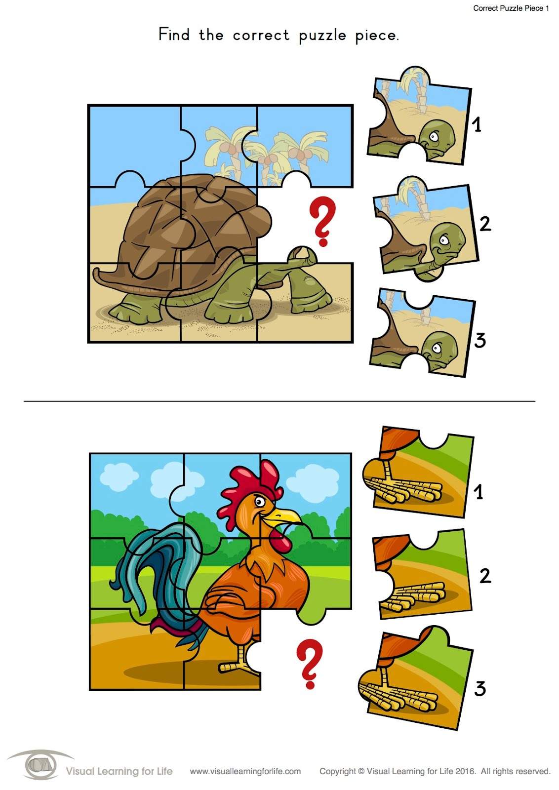 Visual Learning For Life Correct Puzzle Piece