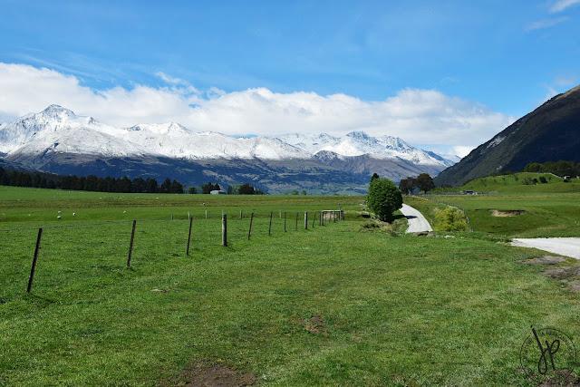 alps, farm, road, trees