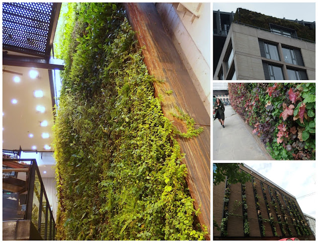 Green walls inside and out in London