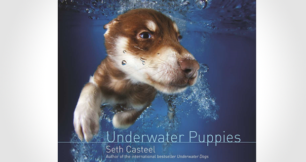 Underwater Puppies Book