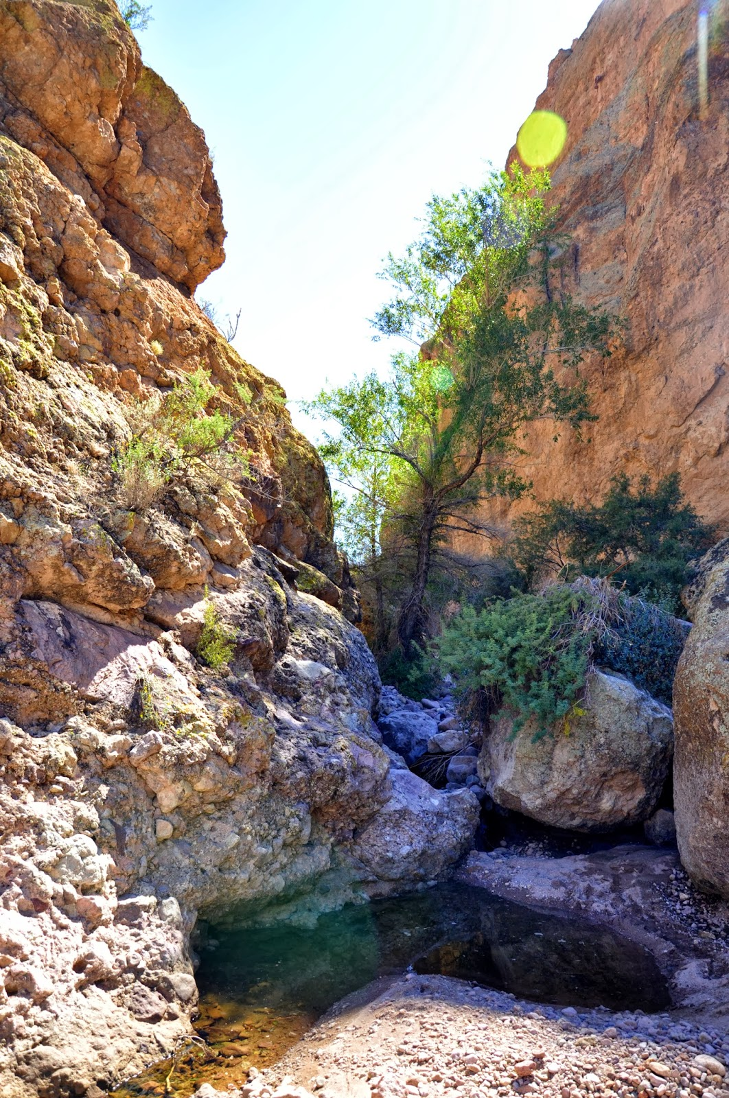 Exploring the Southwest: Garden Valley Loop/Hackberry Springs