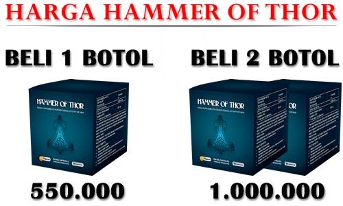 Harga Hammer Of Thor Asli
