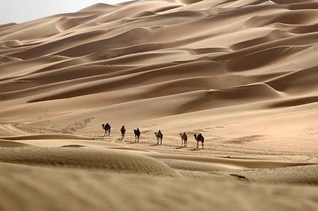 deserts of the UAE