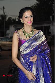 Model Shilpa Reddy Stills in Purple Silk Saree at Gudi Sambaralu 2017 Sri Ramachandra Swami Temple  0057.JPG