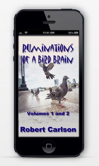 If you like my Blogs, you will love my eBooks at amazon and B&N